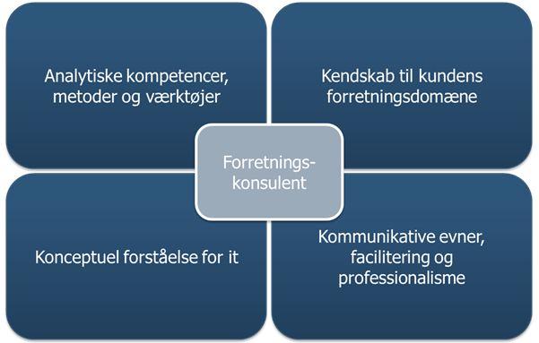 analytiske kompetencer, kendskab til kundens forretningsdomæne, konceptuel forståelse for it og kommunikative evner
